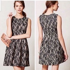 HD in Paris black and nude lace dress Sz XS